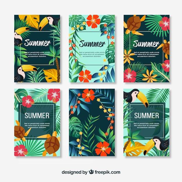 Pakiet Kwiatowych Kart Letnich Darmowych Wektorów