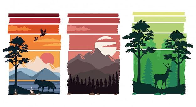 Pakiet Pięknych Krajobrazów Scen Premium Wektorów