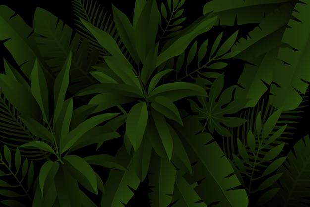 Palm I Paproci Pozostawia Realistyczne Ciemne Tło Tropikalne Darmowych Wektorów