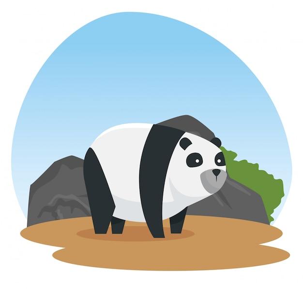Panda dzikie zwierzę z kamieniami i krzewami Darmowych Wektorów