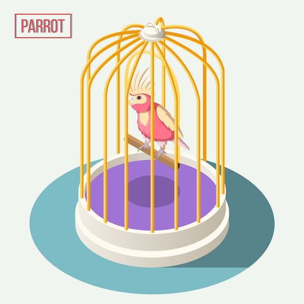Papuga W Skład Izometryczny Klatki Darmowych Wektorów