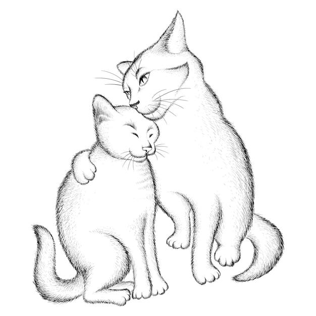 Para Miłośników Kotów. Premium Wektorów
