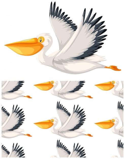 Pelikan Wzór Na Białym Tle Darmowych Wektorów