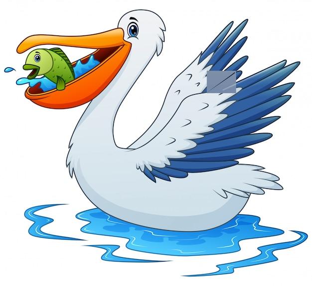 Pelikan Zwierzęca Kreskówka Je Ryba Na Wodzie Premium Wektorów