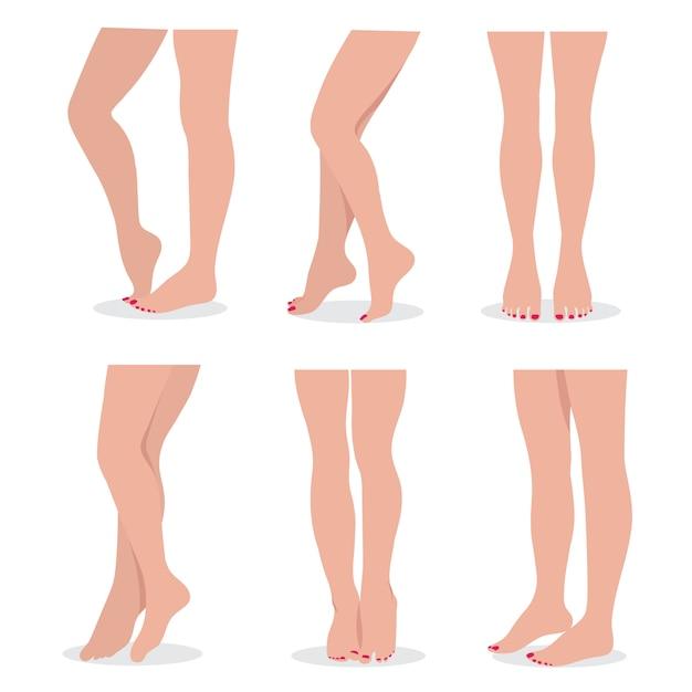 Piękna Elegancka Kobieta Nogi I Stopy W Różnych Pozach Odizolowywał Set Premium Wektorów