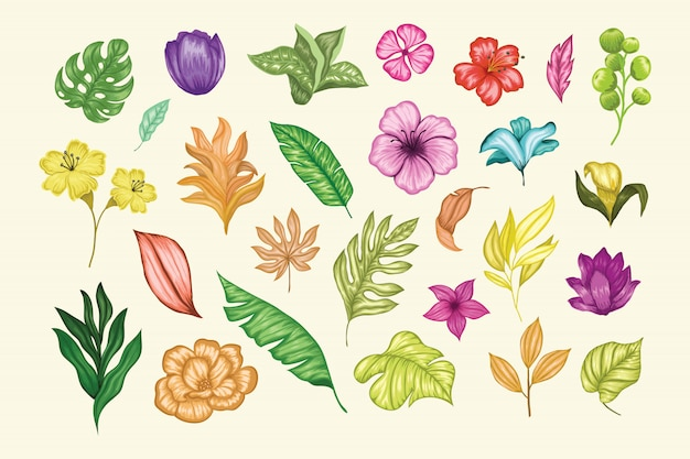 Piękna Kolekcja Ręcznie Rysowane Kwiatowy Premium Wektorów