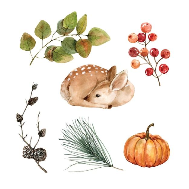 Piękna kreatywnie jesieni akwareli ilustracja dla dekoracyjnego use. Darmowych Wektorów