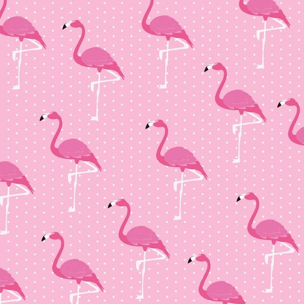Piękne Flamingi Ptaków Stada Wzór Premium Wektorów