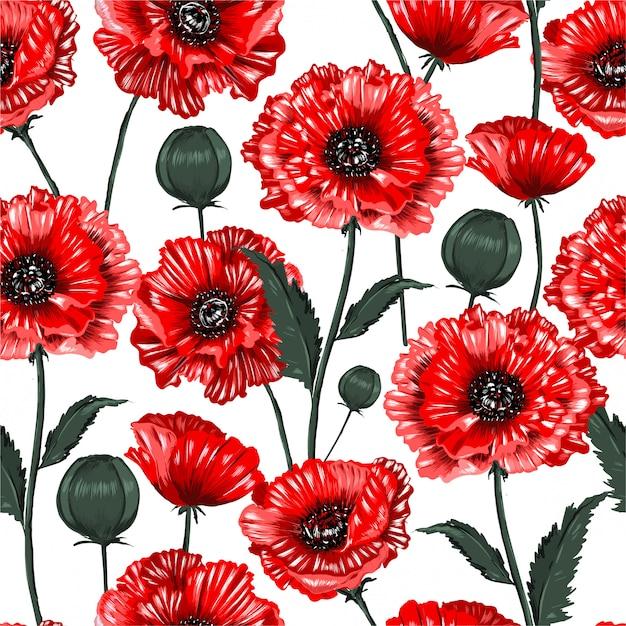 Pięknego Kwitnącego Czerwonego Maczka Kwiatów Bezszwowa Deseniowa Ilustracja Premium Wektorów