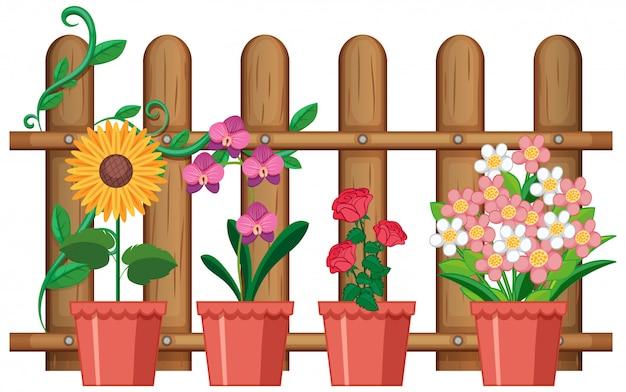 Piękni Kwiaty W Garnkach Na Białym Tle Darmowych Wektorów