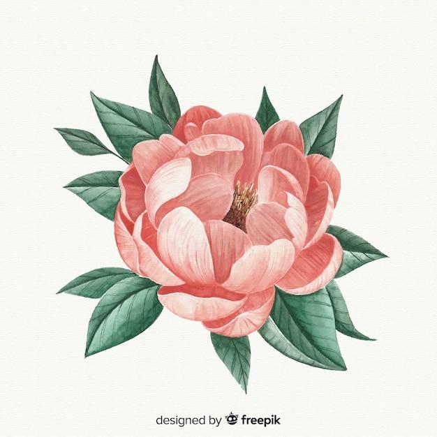 Piękny kwiat colar akwarela Darmowych Wektorów