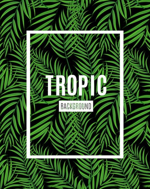 Piękny Liść Palmowy Tropikalny Sylwetka Tło Premium Wektorów