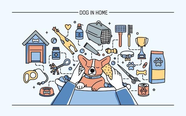 Pies W Domu Poziomy Baner Z Zabawkami Dla Zwierząt, Lekami I Posiłkami Dla Szczeniąt Premium Wektorów