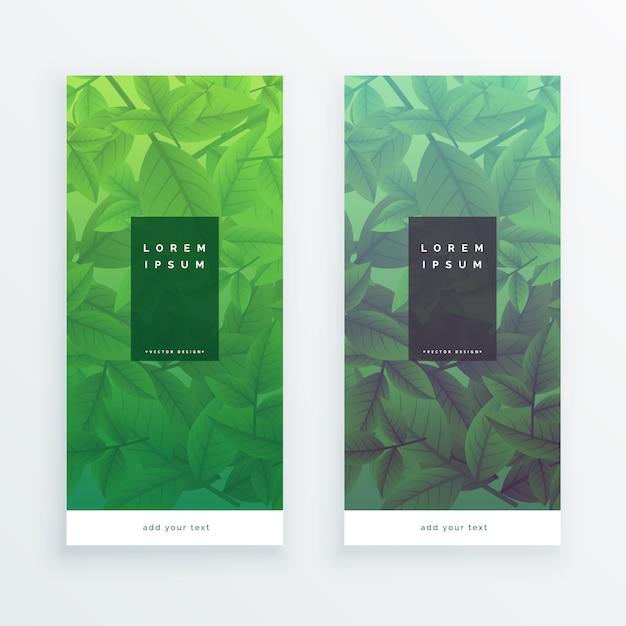 Pionowe banery zielonych liści Darmowych Wektorów