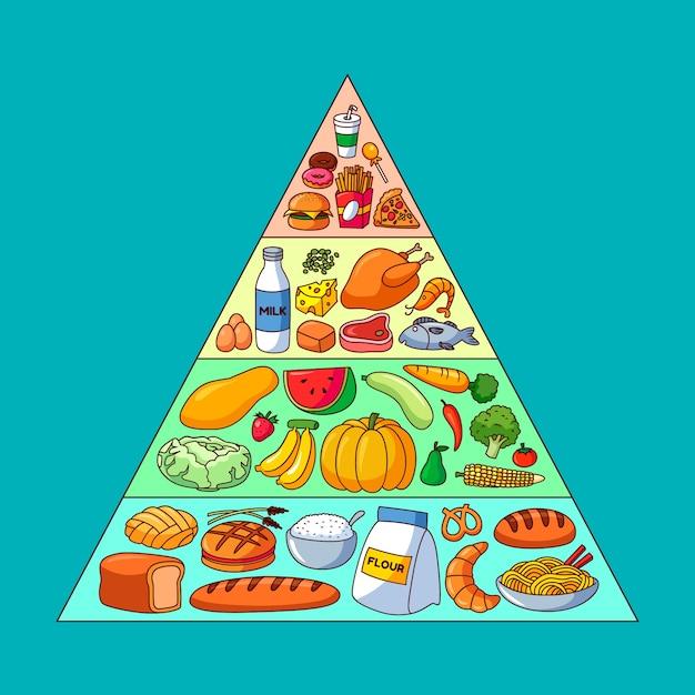 Piramida żywieniowa Z Różnymi Pokarmami Dla Różnych Poziomów Darmowych Wektorów