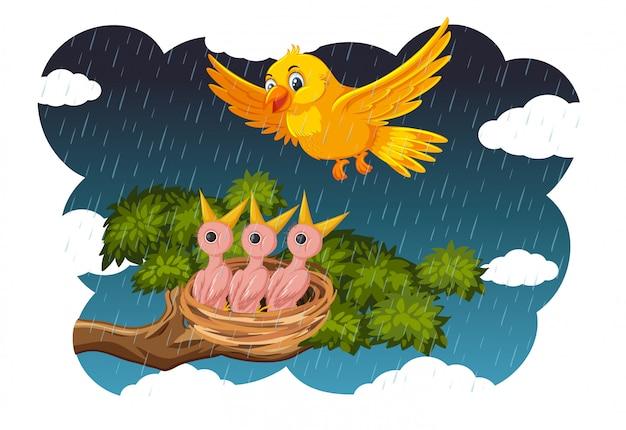 Pisklęta I Ich Ptaki W Przyrodzie Premium Wektorów