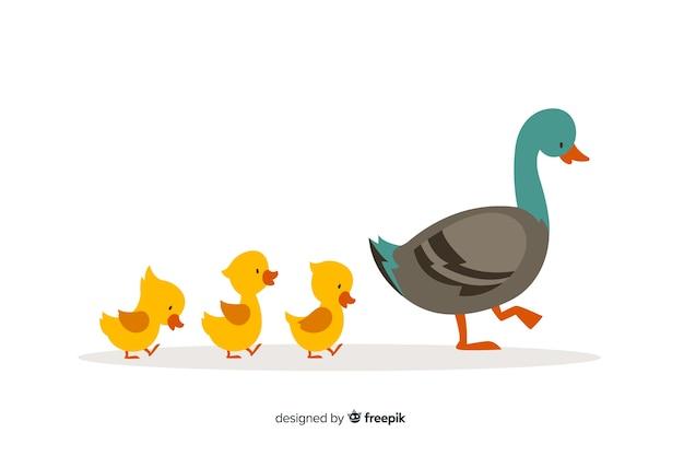 Płaska kaczka matki i słodkie żółte kaczątka Darmowych Wektorów