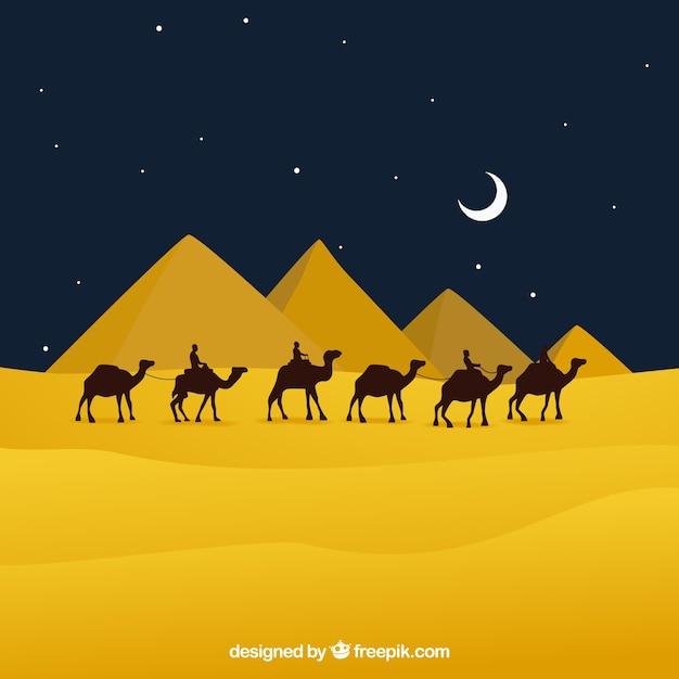 Płaska Noc Krajobraz Z Egipskimi Piramidami I Karawaną Wielbłądów Darmowych Wektorów