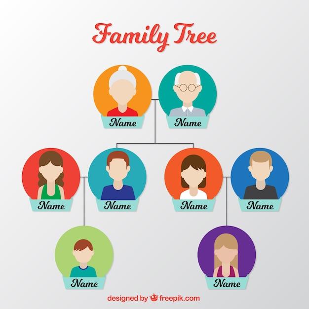 Płaski Drzewo Genealogiczne Z Kolorowe Koła W Płaskiej Konstrukcji Darmowych Wektorów