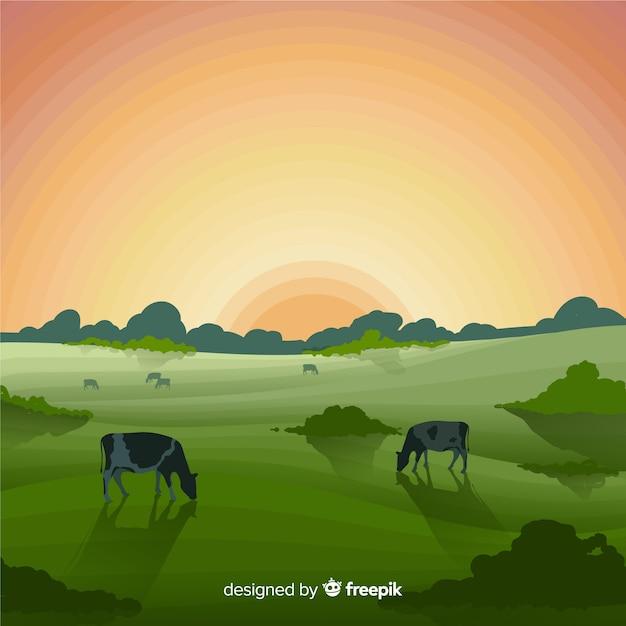 Płaski Krajobraz Gospodarstwa Darmowych Wektorów