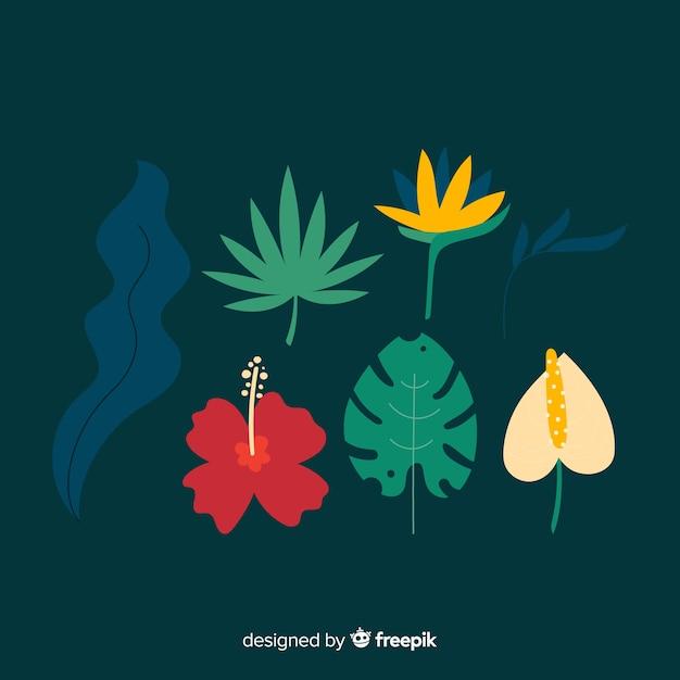 Płaskie Tropikalne Kwiaty I Liście Darmowych Wektorów