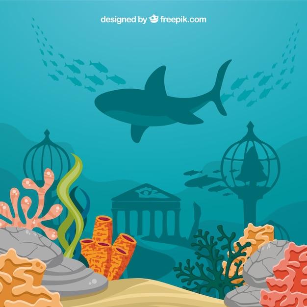 Podwodne Tło Z Karykaturami Zwierząt Wodnych Darmowych Wektorów