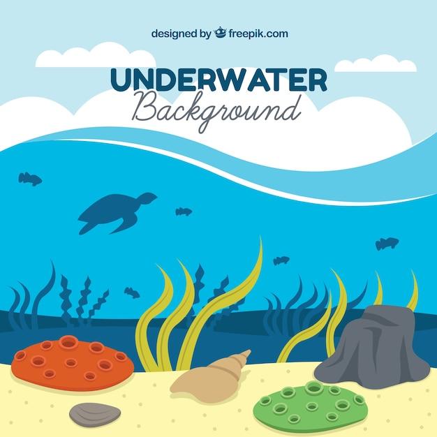 Podwodne Tło Z Różnymi Gatunkami Morskimi Darmowych Wektorów