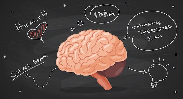Pojęcie Anatomii Mózgu I Kreatywności Premium Wektorów