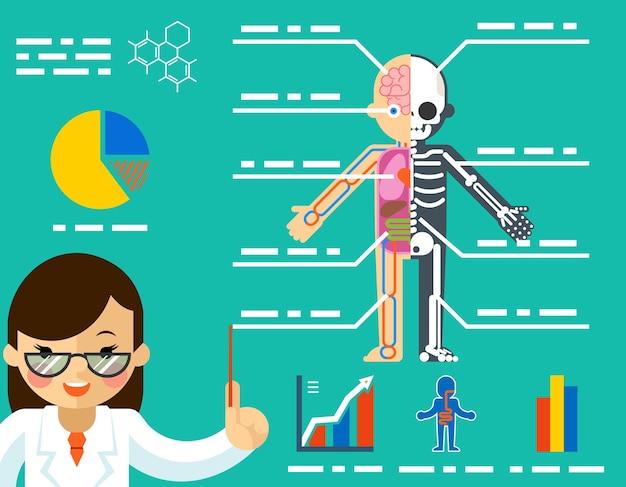 Pojęcie Medyczne. Kobieta Lekarz Pokazano Anatomię. Darmowych Wektorów