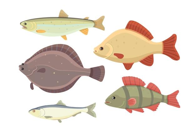 Pojedyncze Ryby Rzeczne. Zestaw Ryb Słodkowodnych Morskich Kreskówek. Ilustracja Ocean Fauny Premium Wektorów