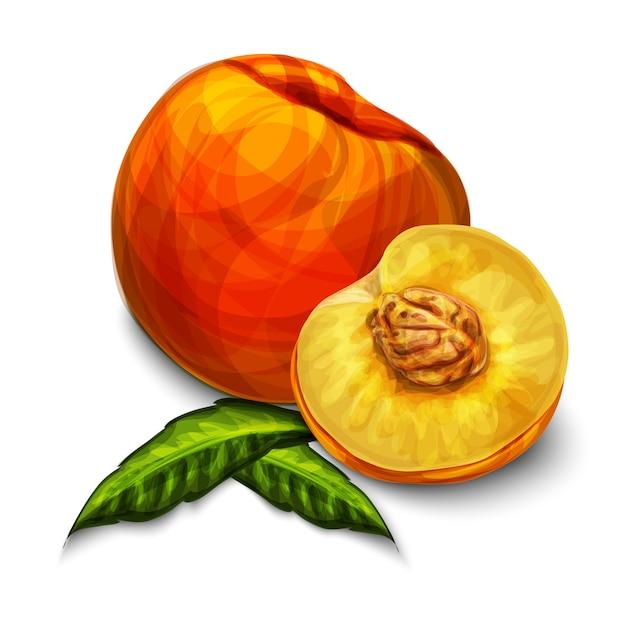 Pomarańczowy Naturalny Organiczny Owoc Brzoskwini Darmowych Wektorów