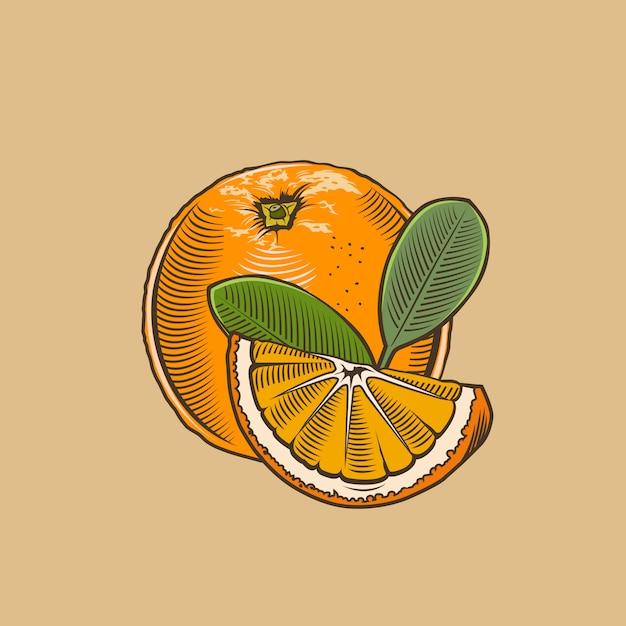 Pomarańczowy W Stylu Vintage. Kolorowych Ilustracji Wektorowych Premium Wektorów