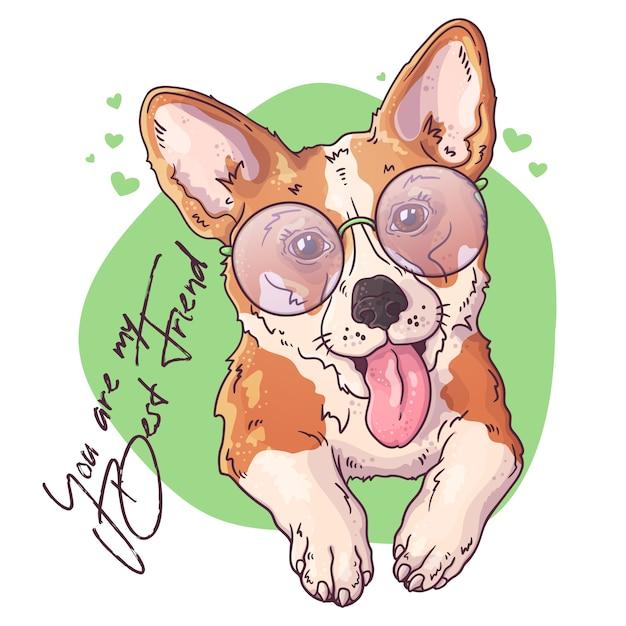 Portret Cute Corgi Psa. Premium Wektorów