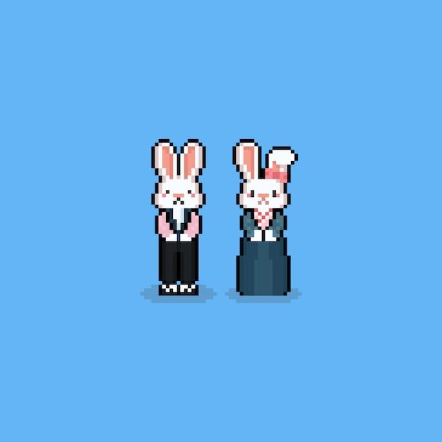 Postać z kreskówki królik pikselowy z hanbok costume.chuseok. Premium Wektorów