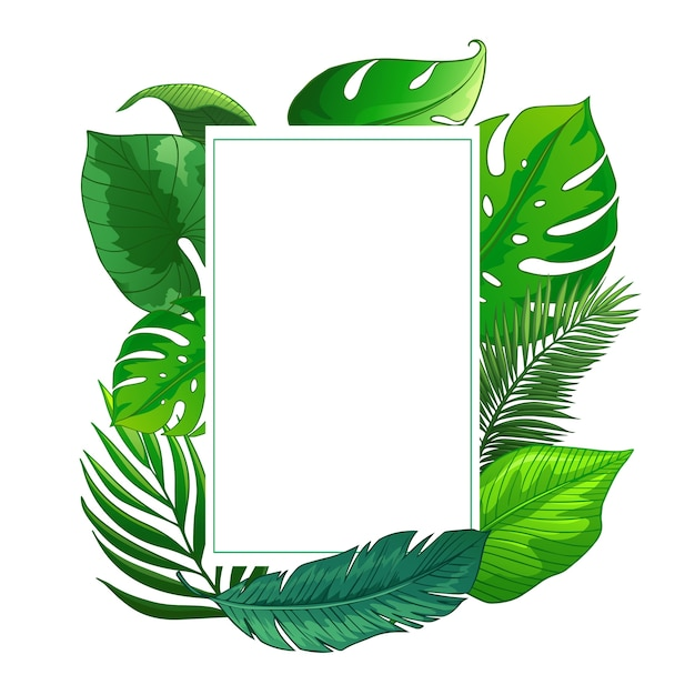 Pozostawia Tropikalną Ramkę Premium Wektorów