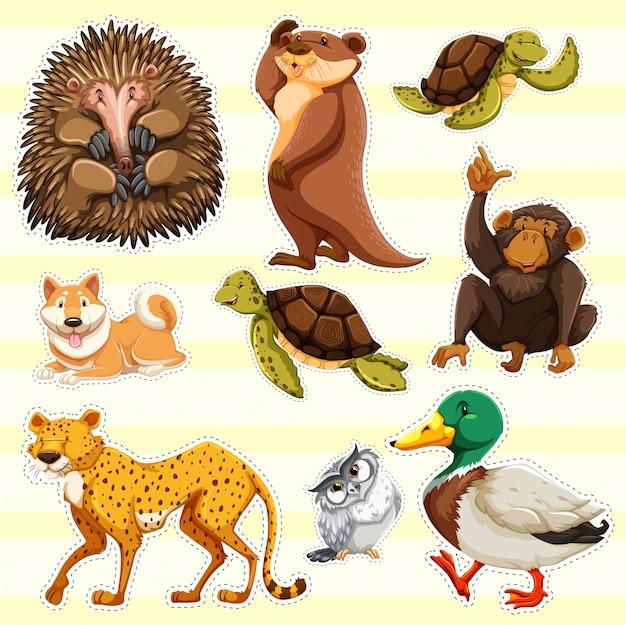 Projekt naklejki dla dzikich zwierząt na żółtym tle Premium Wektorów