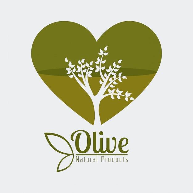Projekt oliwy z oliwek Premium Wektorów