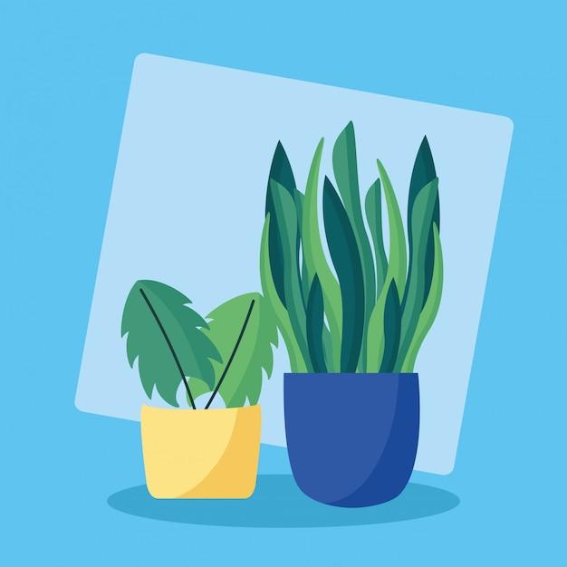 Projekt Płaski Obraz Rośliny Ozdobne Darmowych Wektorów