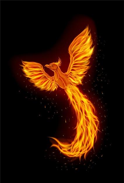 Projektowanie Logo Maskotka Ognia Feniks Premium Wektorów