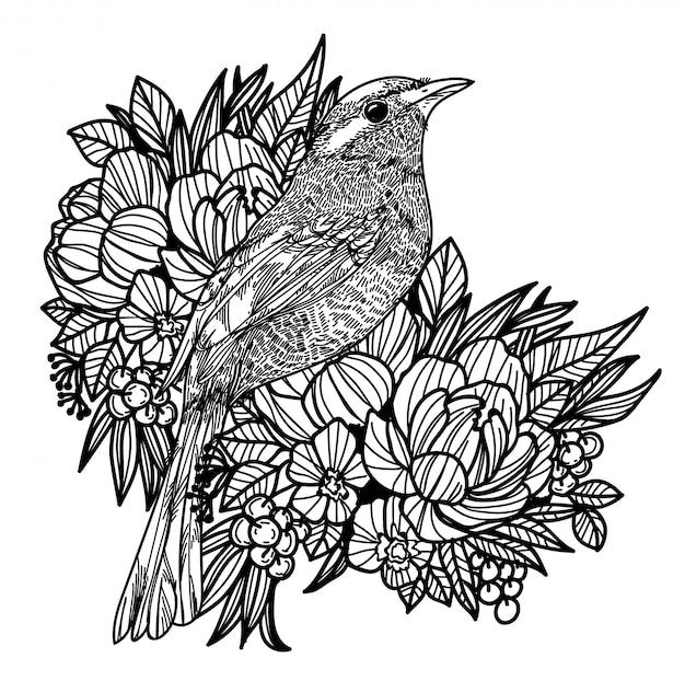 Ptak Premium Wektorów