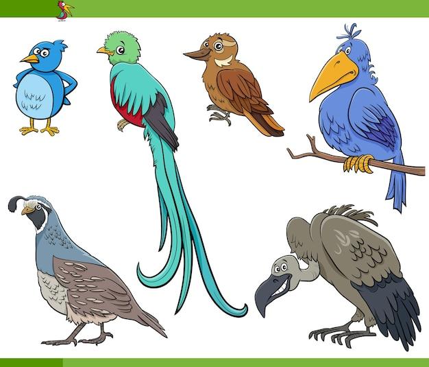 Ptaki Z Kreskówek Zestaw Znaków Zwierząt Premium Wektorów