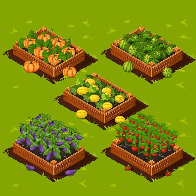 Pudełko Na Ogród Warzywny Premium Wektorów