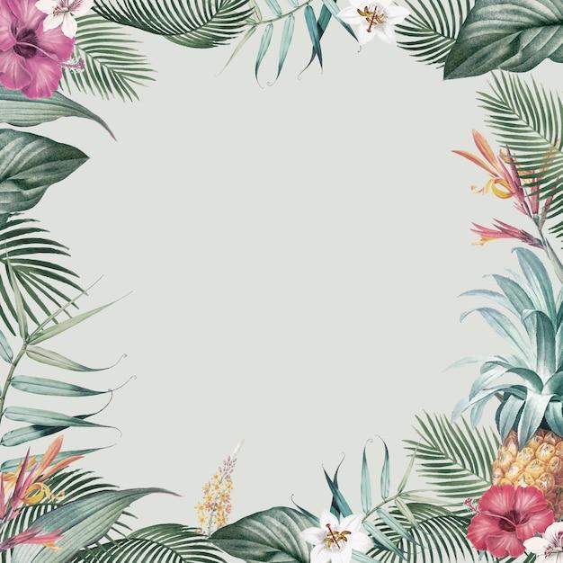 Rama tropikalnych liści Darmowych Wektorów