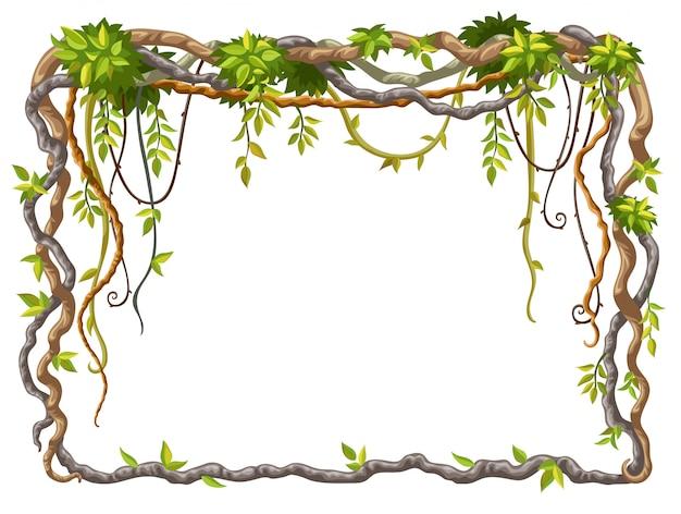 Rama Z Gałęzi Liany I Liści Tropikalnych Darmowych Wektorów