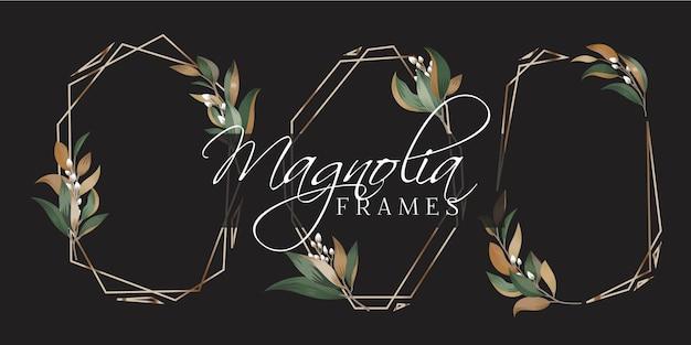 Ramki magnolia Premium Wektorów