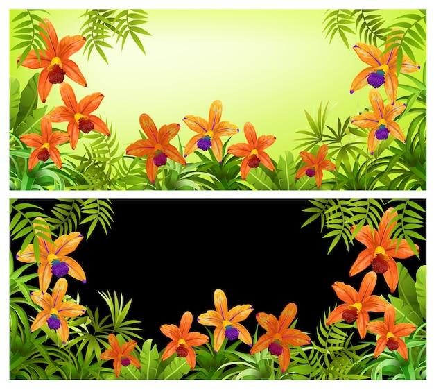 Ramki Z Roślin, Liści I Kwiatów Orchidei. Darmowych Wektorów