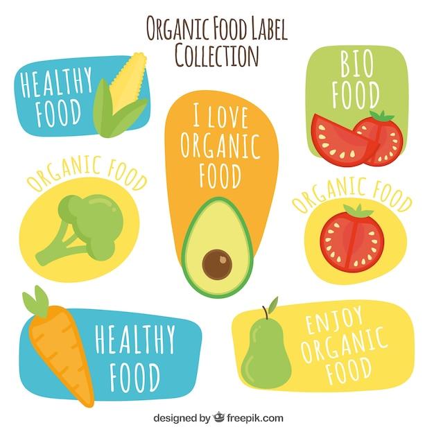 Rę cznie rysowana kolekcja organicznych żywnoś ci Darmowych Wektorów