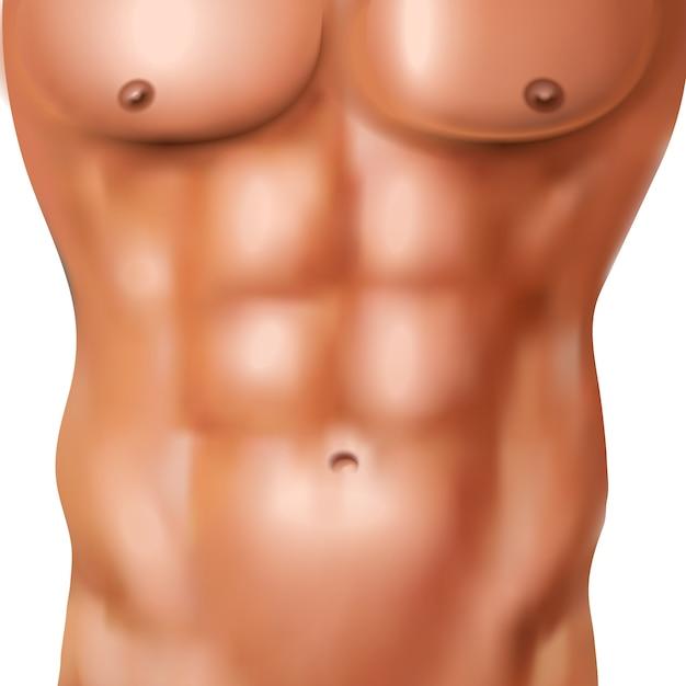 Realistyczna abs paczka nagi mężczyzna z sportowym kształtnym ciałem na białej tło wektoru ilustraci Darmowych Wektorów