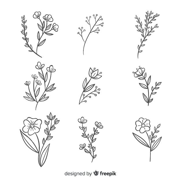 Realistyczna Kolekcja Ręcznie Rysowane Kwiaty Premium Wektorów