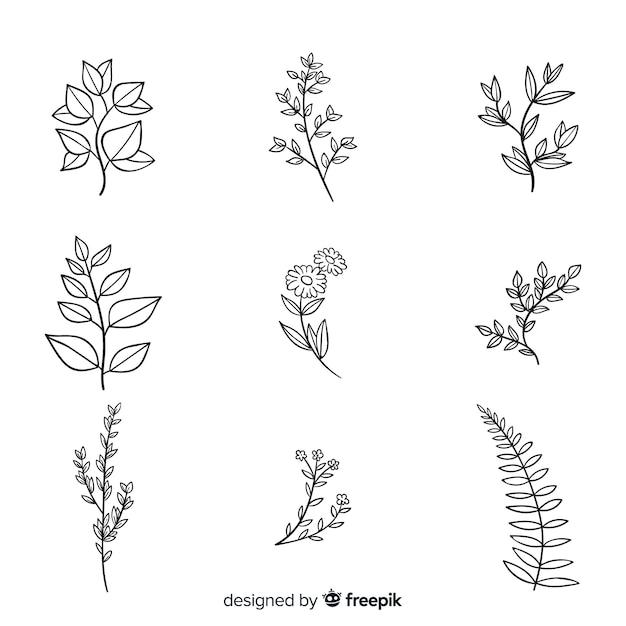 Realistyczne ręcznie rysowane opakowanie kwiatów botanicznych Darmowych Wektorów